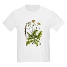 Botanical Dandelion T-Shirt