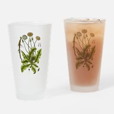 Botanical Dandelion Drinking Glass