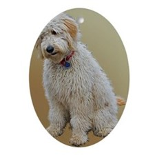 Goldendoodle: Wallace Oval Ornament