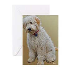 Goldendoodle: Wallace Greeting Cards (Pk of 10