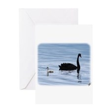 Black Swan and Cygnet 9Y885D-006 Greeting Card