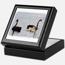 Black Swans and Cygnets AF081D-020 Keepsake Box