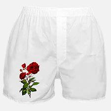 Vintage Red Rose Boxer Shorts