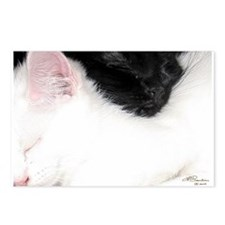 Ebony and Ivory Postcards (Package of 8)