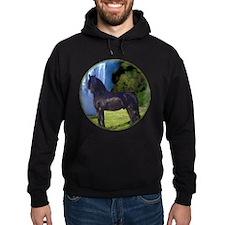 Hidden Horse Canyon Hoodie