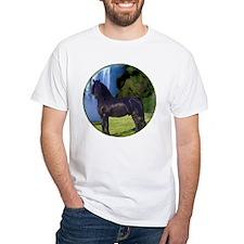 Hidden Horse Canyon Shirt