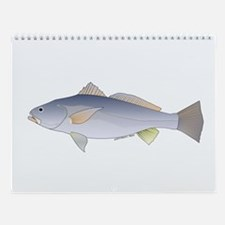 Gulf of California fish Wall Calendar