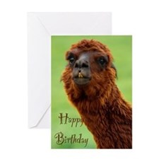 funny alpaca birthday Greeting Card