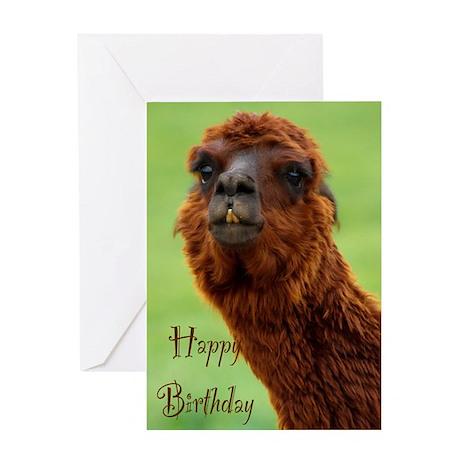 funny alpaca birthday Greeting Card