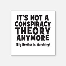 Its not a conspiracy theory anymore big brother St
