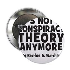 Its not a conspiracy theory anymore big brother 2.