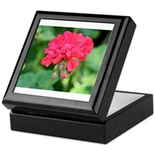Geranium flower (red) in bloom Keepsake Box