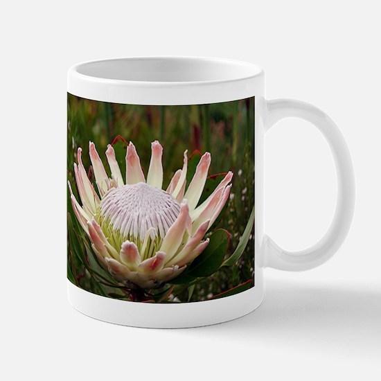 Protea flower in bloom Mug