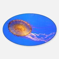 Helaine's Jelly Fish Sticker (Oval)
