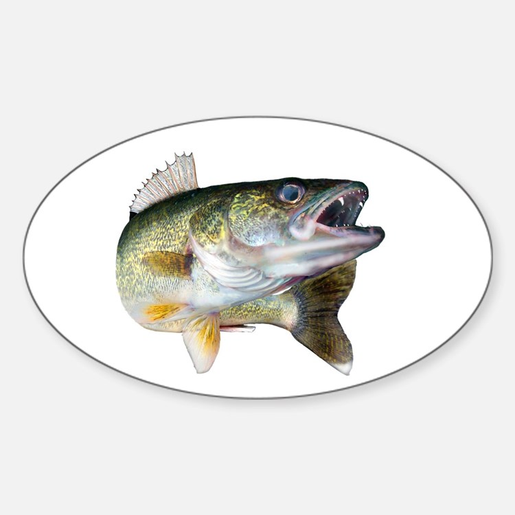 walleye turn Decal