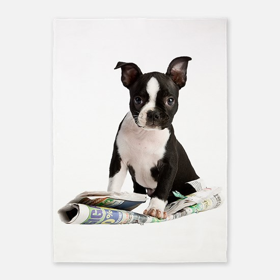Boston Terrier 5'x7'Area Rug