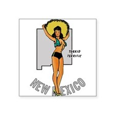 New Mexico Pinup Sticker