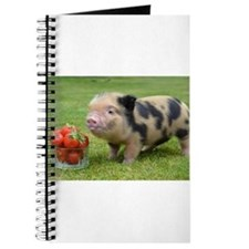 Micro pig with strawberries Journal