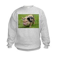 Little Spotty micro pig Sweatshirt