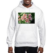Peruvian lily flowers in bloom Hoodie