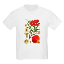 Vintage Pomegranate T-Shirt