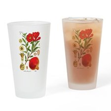 Vintage Pomegranate Drinking Glass