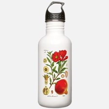 Vintage Pomegranate Sports Water Bottle