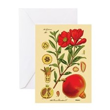 Vintage Pomegranate Greeting Card