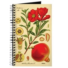 Vintage Pomegranate Journal
