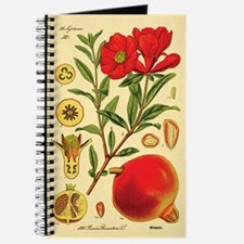 Vintage Pomegranate Journal