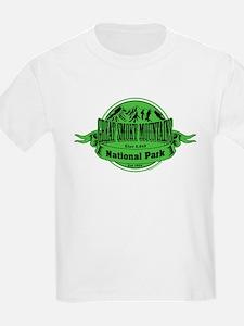 great smokey mountains 1 T-Shirt