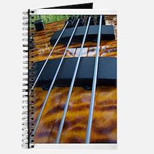Four String Tiger Eye bass Journal