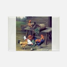 Rooster Turnip Farm Rectangle Magnet