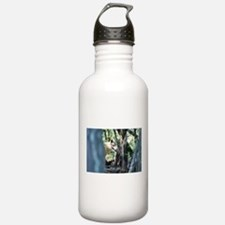 """This Is A Cozy Place"""" Water Bottle"""