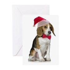Santa Beagle Christmas Cards (Pk of 10)