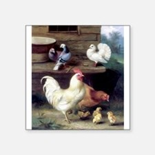 Rooster chicks and pigeons Sticker