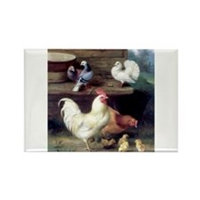 Rooster chicks and pigeons Rectangle Magnet