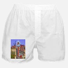 """Chop Suey!"" Boxer Shorts"