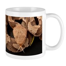 Copperhead Snake Mug