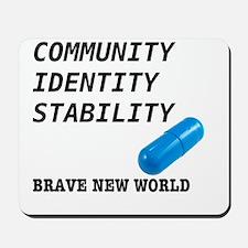 Community, Identity, Stability Mousepad