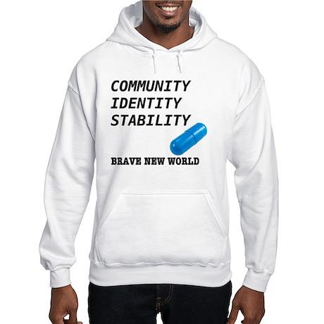 Community, Identity, Stability Hoodie