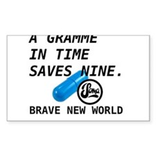 Brave New World - Gramme In Time Decal