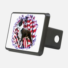 BostonPatriot.png Hitch Cover