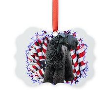 KerryPatriot.png Ornament