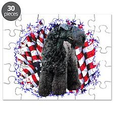 KerryPatriot.png Puzzle