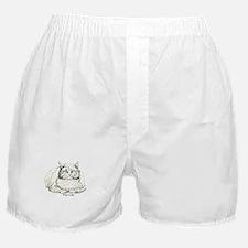 Fat Cat Boxer Shorts