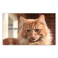 Cat - I'm purrfect! Decal