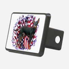 ManchesterPatriot.png Hitch Cover