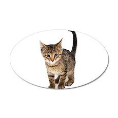 Cute Brown Tabby Kitten Wall Decal