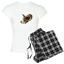 Adorable Rescue Australian Shepherd Mix Pajamas